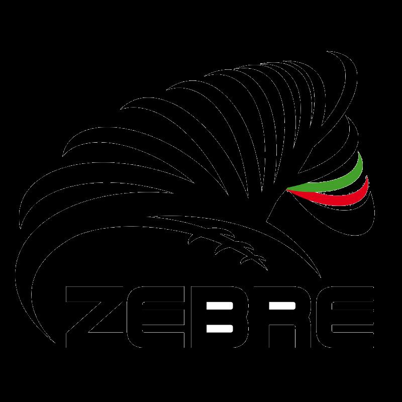 Programme TV Zebre