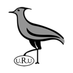 Programme TV Uruguay